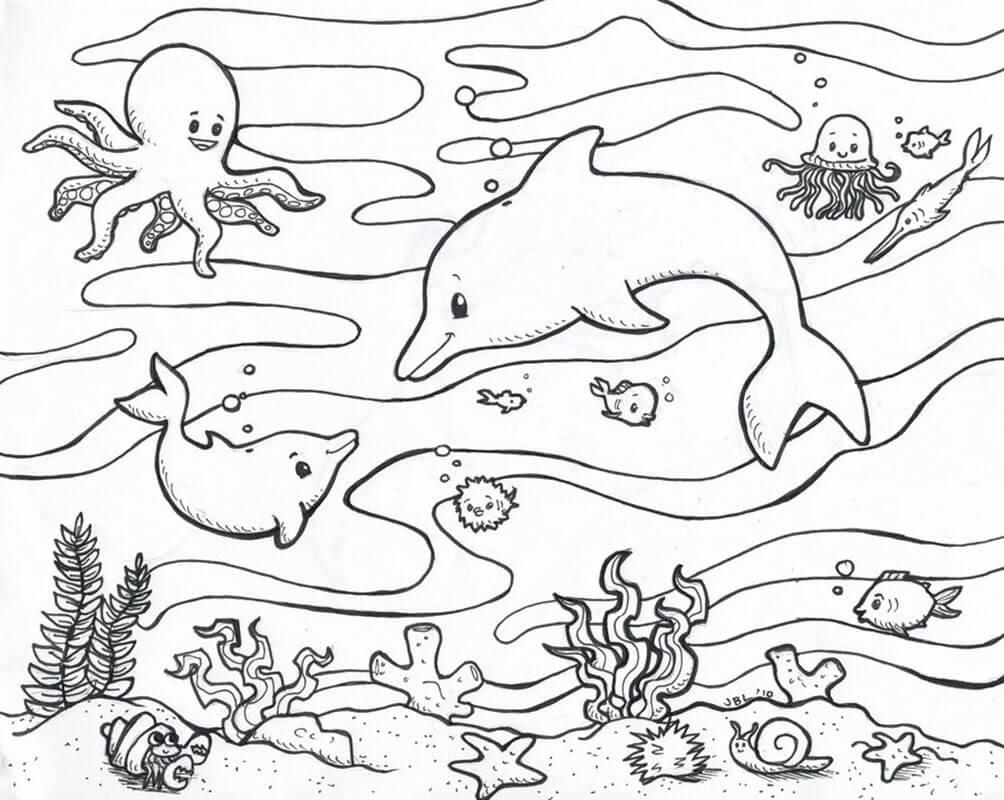 Cuộc sống phong phú dưới biển