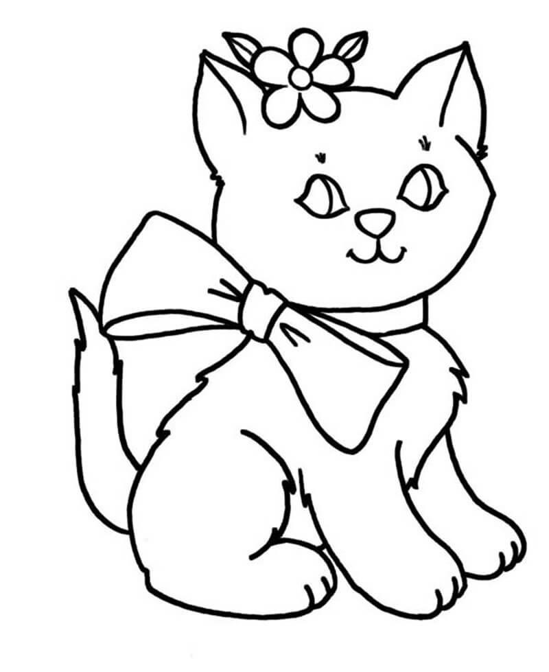 Cô mèo xinh xắn