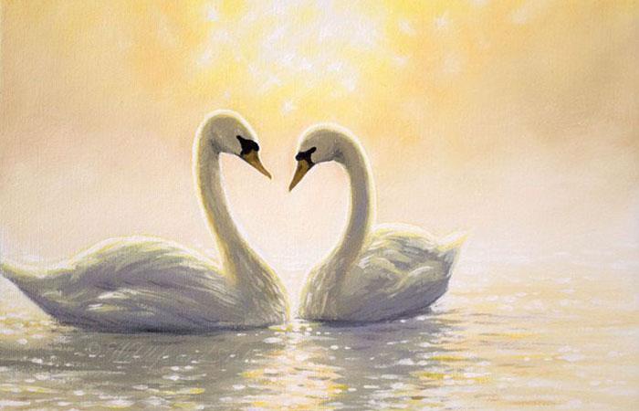 Bức tranh chim trắng có ý nghĩa phong thủy rất tốt cho người tuổi Ất Sửu thuộc mệnh Kim
