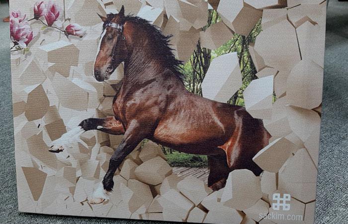 Tranh có hình ngựa sẽ hợp với những gia chủ tuổi Tuất